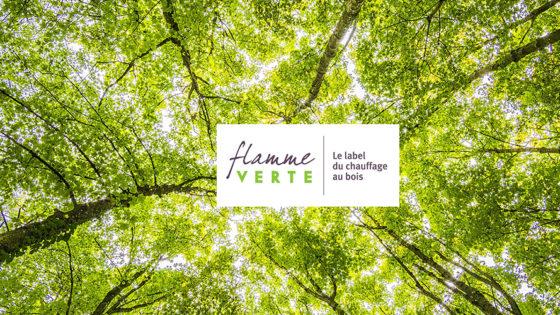 flamme-verte-forêt-web2